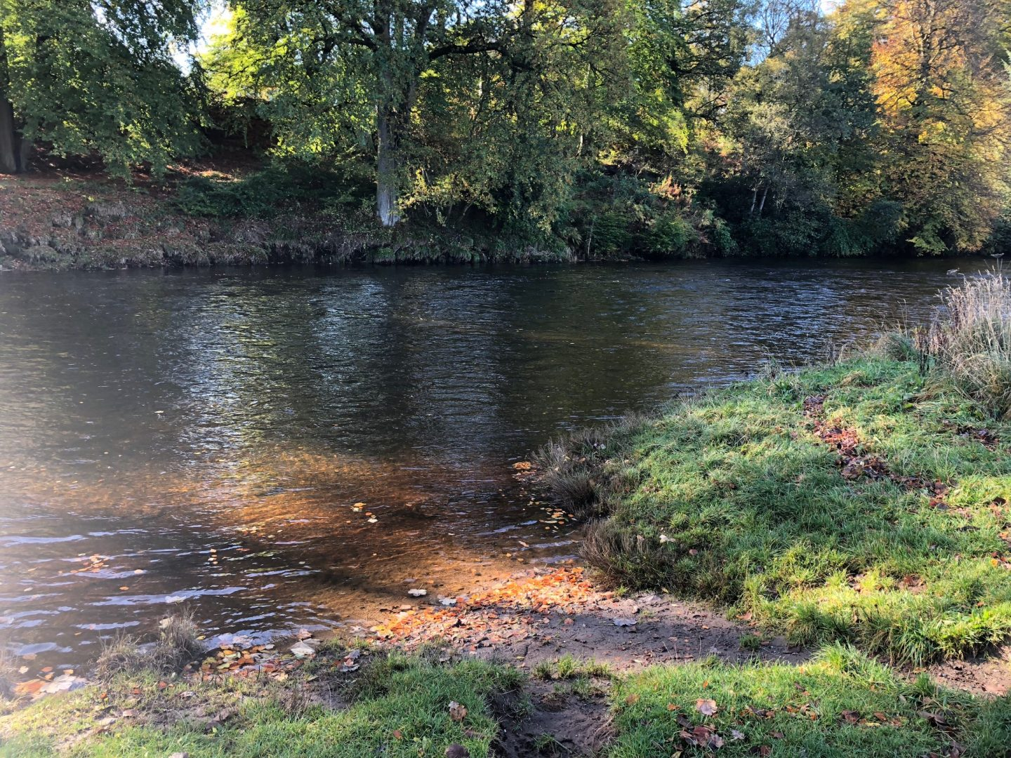 River Teith in Scotland, beautiful spot for Wild Swimming, looking peaceful and serene.